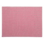 Mini Gingham  Coral placemats set of four